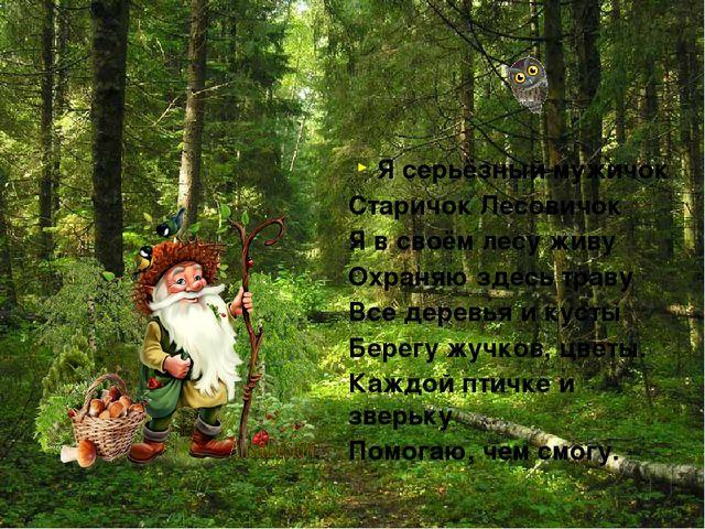 Я серьёзный мужичок Старичок Лесовичок Я в своём лесу живу Охраняю здесь трав...