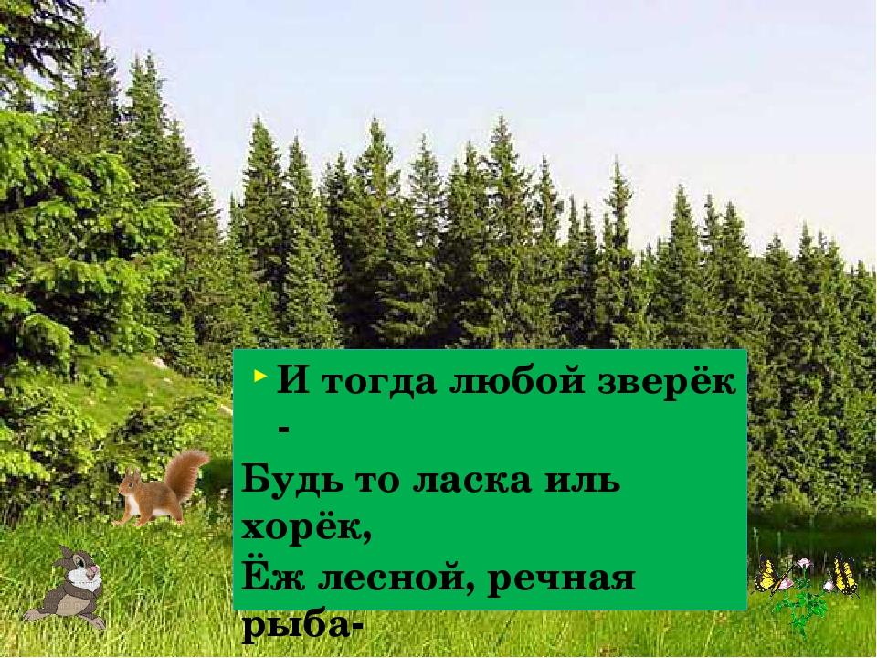 И тогда любой зверёк - Будь то ласка иль хорёк, Ёж лесной, речная рыба- Скаже...