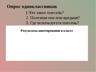 Опрос одноклассников 1.Что такое плесень? 2. Полезная она или вредная? 3. Где