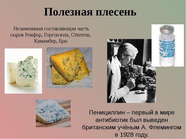 Пенициллин – первый в мире антибиотик был выведен британским учёным А. Флемин...