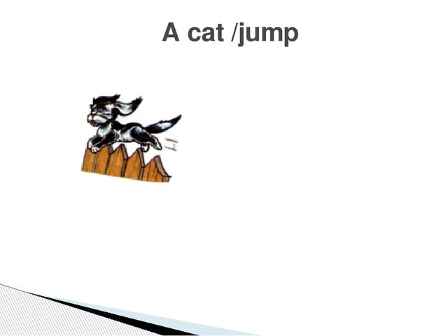 A cat /jump