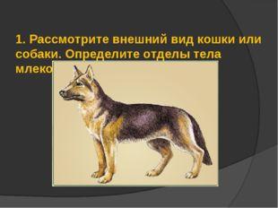 1.Рассмотрите внешний вид кошки или собаки. Определите отделы тела млекопит