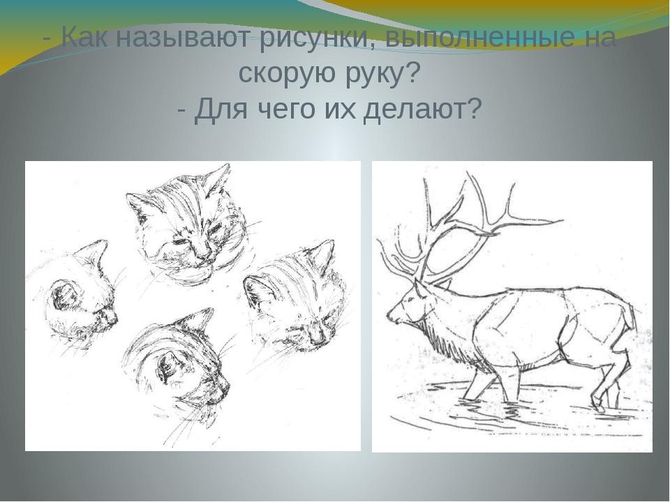 - Как называют рисунки, выполненные на скорую руку? - Для чего их делают?