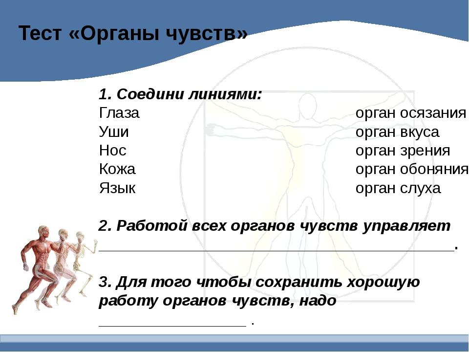 Тест «Органы чувств» 1. Соедини линиями: Глаза орган осязания Уши орган вку...