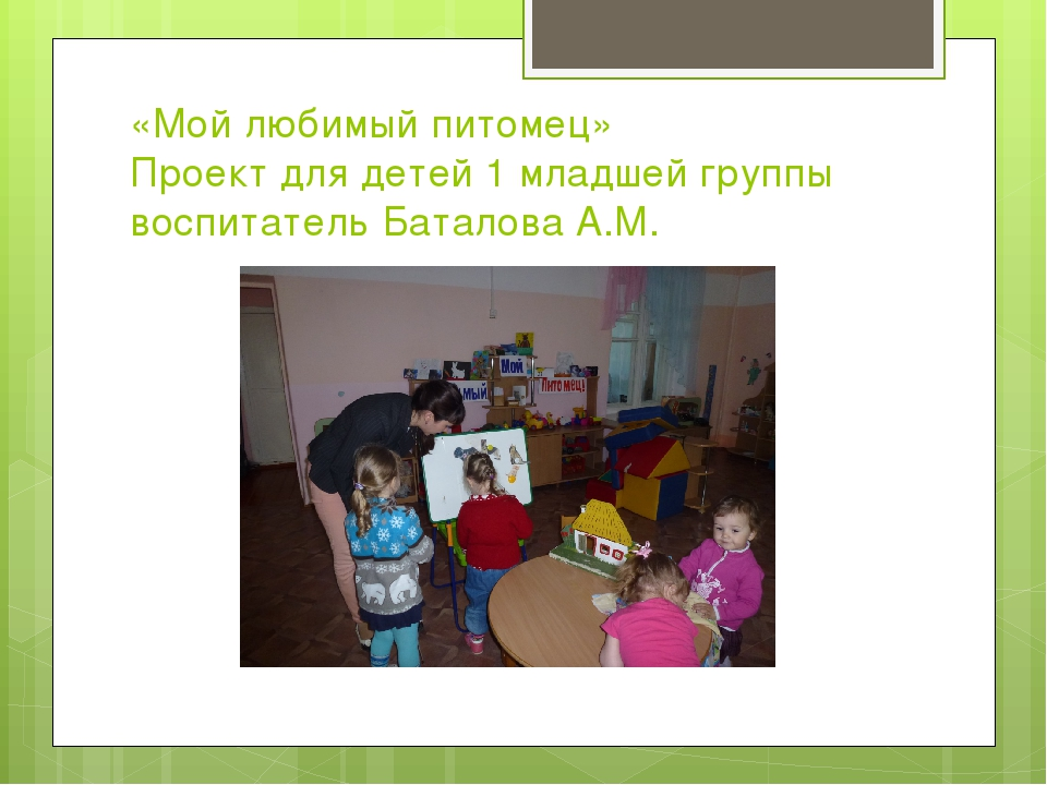 «Мой любимый питомец» Проект для детей 1 младшей группы воспитатель Баталова...