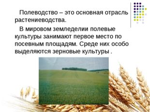 Полеводство – это основная отрасль растениеводства. В мировом земледелии пол
