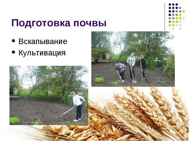 Подготовка почвы Вскапывание Культивация
