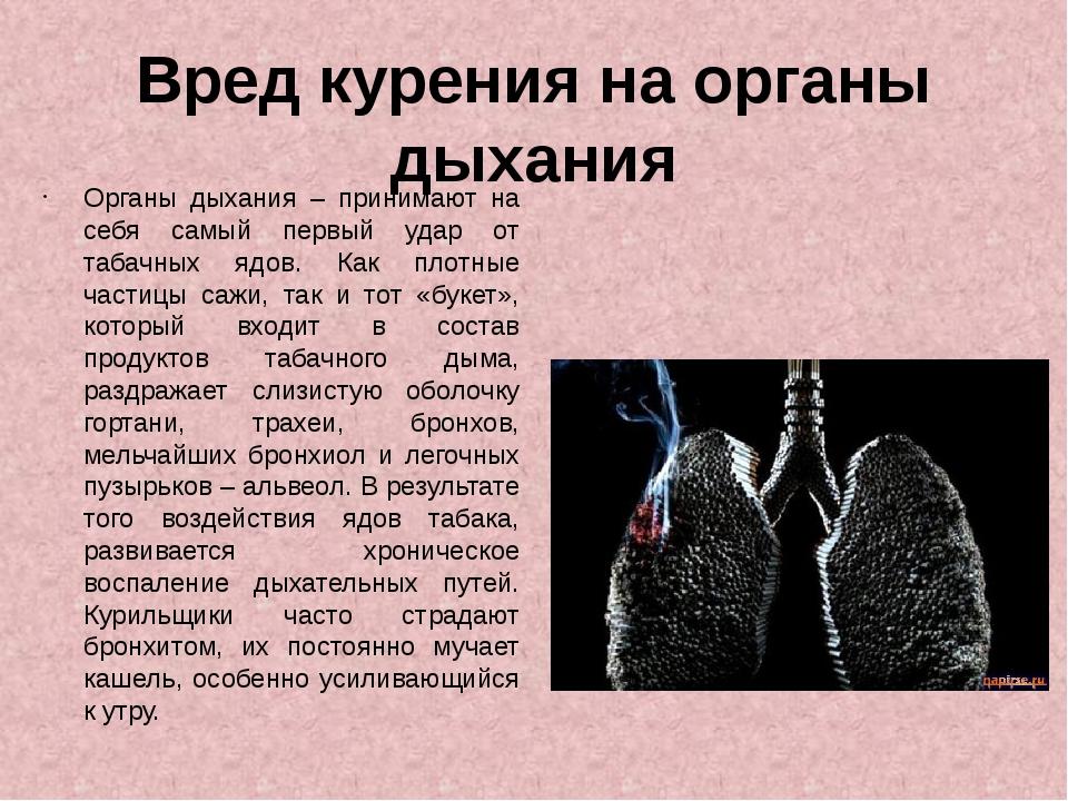 Вред курения на органы дыхания Органы дыхания – принимают на себя самый первы...