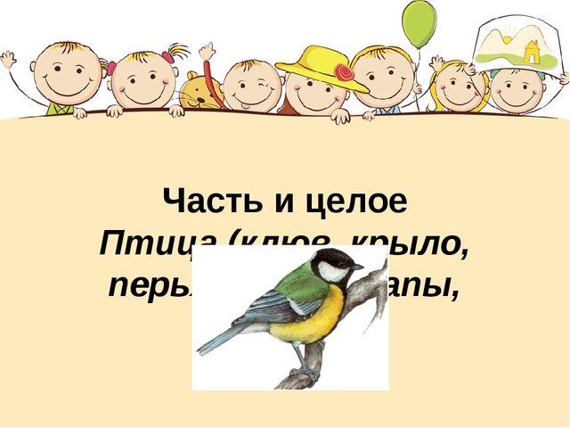 Часть и целое Птица (клюв, крыло, перья, когти, лапы, хвост)