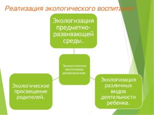 Реализация экологического воспитания