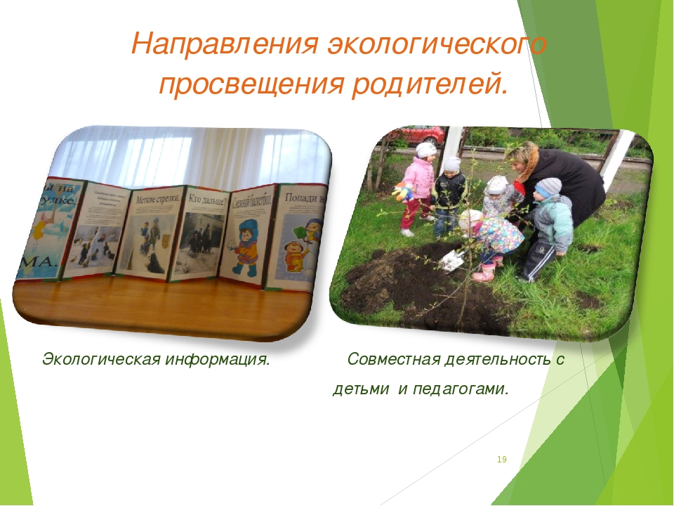 Направления экологического просвещения родителей. Экологическая информация. С...