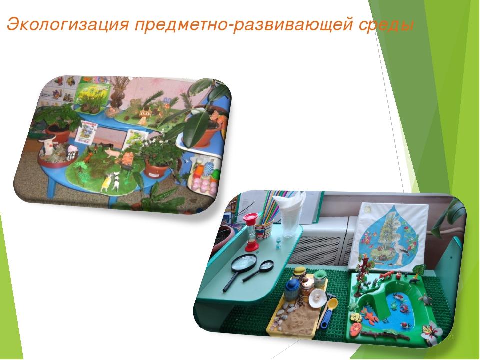 Экологизация предметно-развивающей среды *