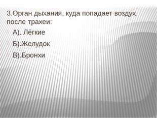 3.Орган дыхания, куда попадает воздух после трахеи: А). Лёгкие Б).Желудок В).