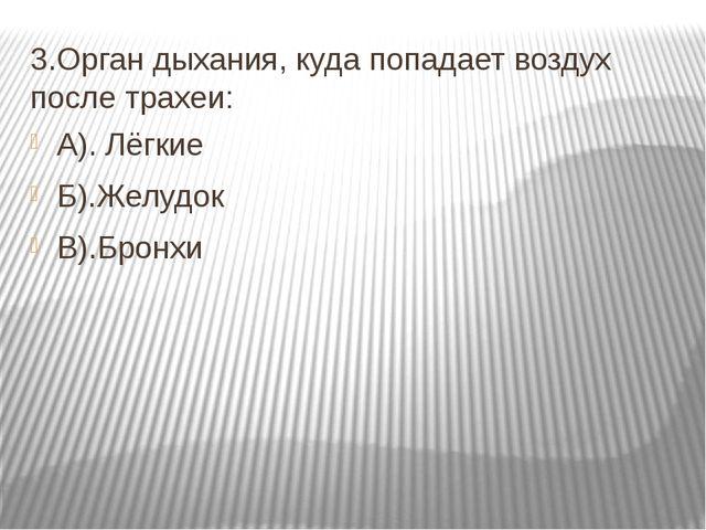 3.Орган дыхания, куда попадает воздух после трахеи: А). Лёгкие Б).Желудок В)....