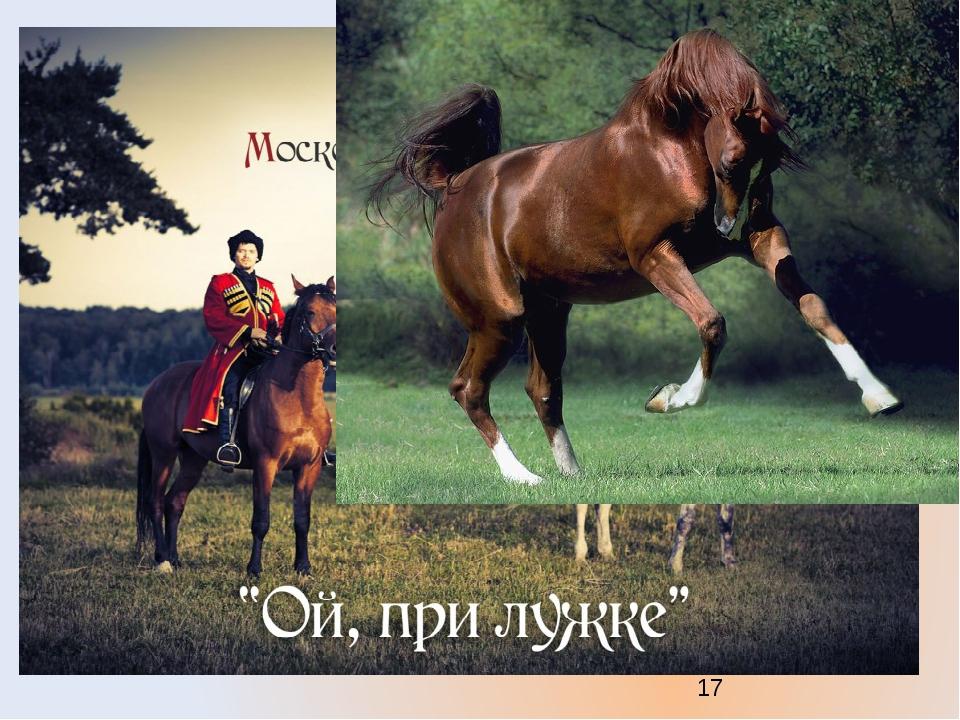 Ты откуда русская появилась, музыка? То ли в чистом поле, То ли в лесе мглист...