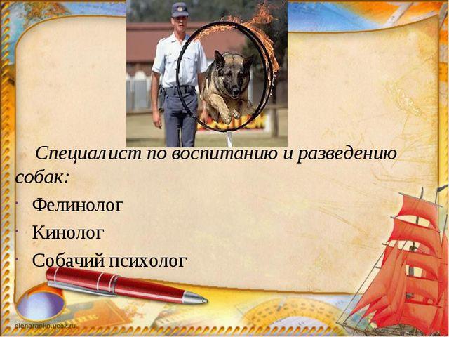 Специалист по воспитанию и разведению собак: Фелинолог Кинолог Собачий психо...