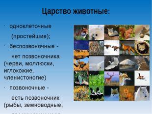 Царство животные: одноклеточные (простейшие); беспозвоночные - нет позвоноч