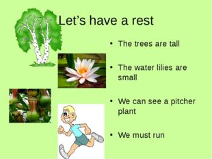 Let's have a rest The trees are tall The water lilies are small We can see a
