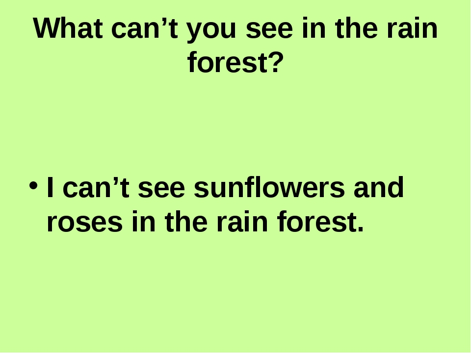 What can't you see in the rain forest? I can't see sunflowers and roses in t...