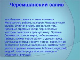 Черемшанский залив Мы побываем с вами в «самом птичьем» Мелекесском районе, н