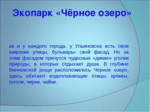 Экопарк «Чёрное озеро» Как и у каждого города, у Ульяновска есть свои широкие