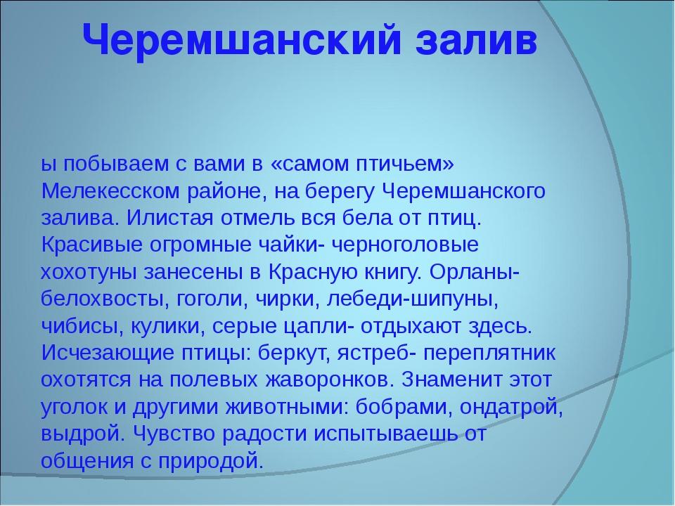Черемшанский залив Мы побываем с вами в «самом птичьем» Мелекесском районе, н...