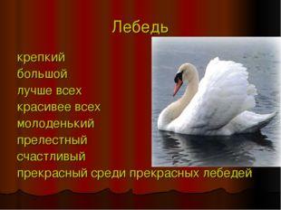 Лебедь крепкий большой лучше всех красивее всех молоденький прелестный счастл