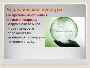 Экологическая культура – это уровень восприятия людьми природы, окружающего м