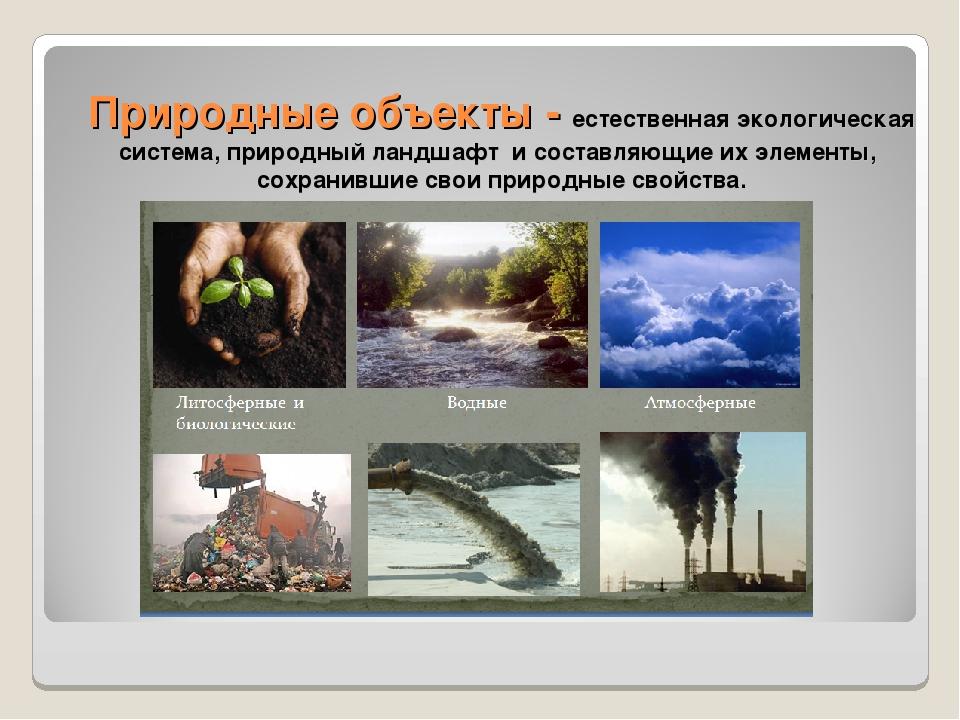 Природные объекты - естественная экологическая система, природный ландшафт и...