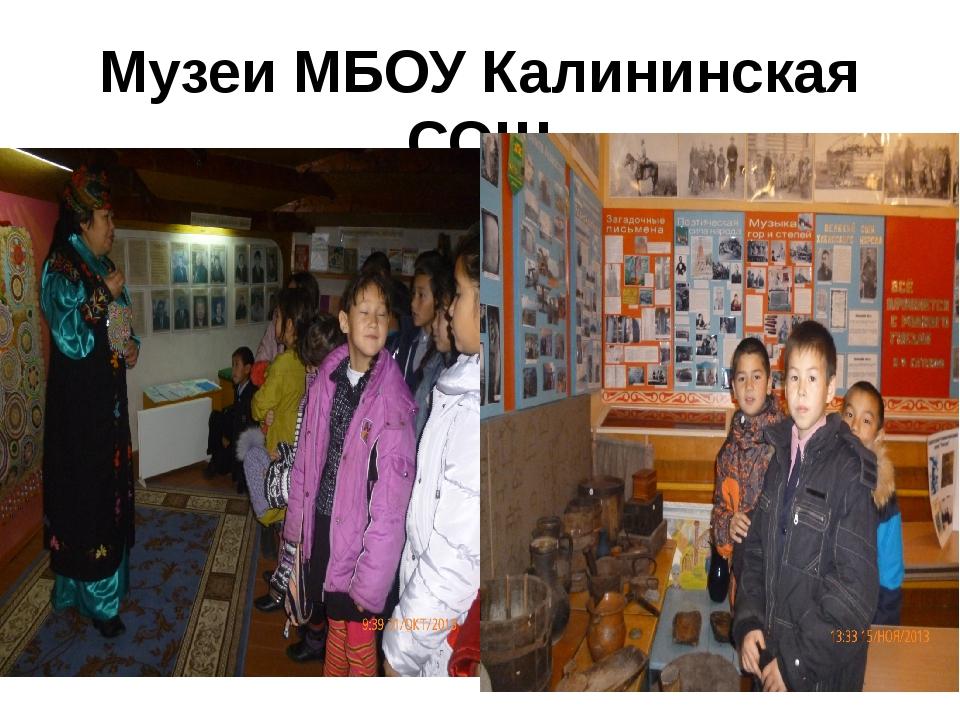Музеи МБОУ Калининская СОШ