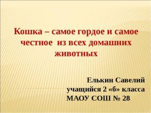 Елькин Савелий учащийся 2 «б» класса МАОУ СОШ № 28 Кошка – самое гордое и са