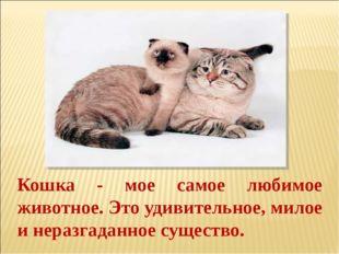 Кошка - мое самое любимое животное. Это удивительное, милое и неразгаданное с