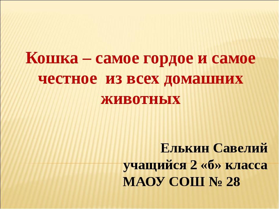 Елькин Савелий учащийся 2 «б» класса МАОУ СОШ № 28 Кошка – самое гордое и са...