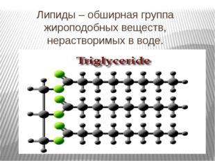 Липиды – обширная группа жироподобных веществ, нерастворимых в воде.