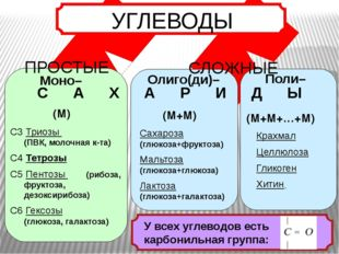 Моно– Олиго(ди)– Поли– С А Х А Р И Д Ы С3 Триозы (ПВК, молочная к-та) С4 Тет