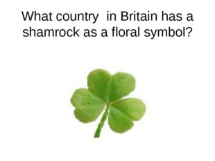 What country in Britain has a shamrock as a floral symbol?