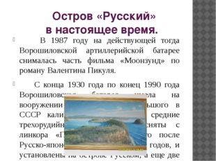 Остров «Русский» в настоящее время. В 1987 году на действующей тогда Ворошил