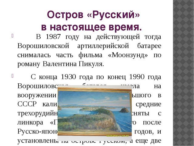 Остров «Русский» в настоящее время. В 1987 году на действующей тогда Ворошил...
