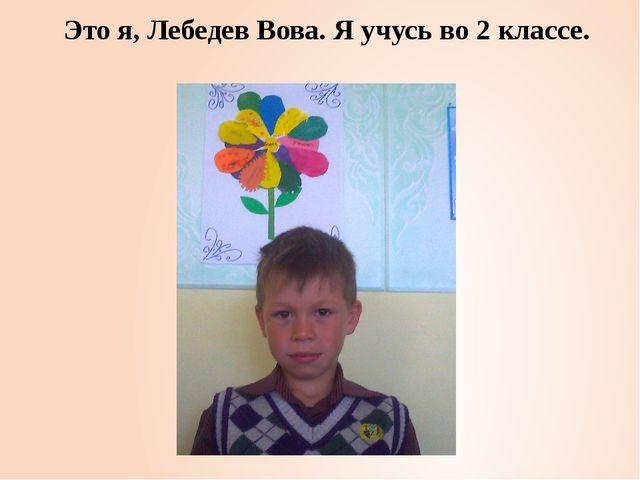 Это я, Лебедев Вова. Я учусь во 2 классе.