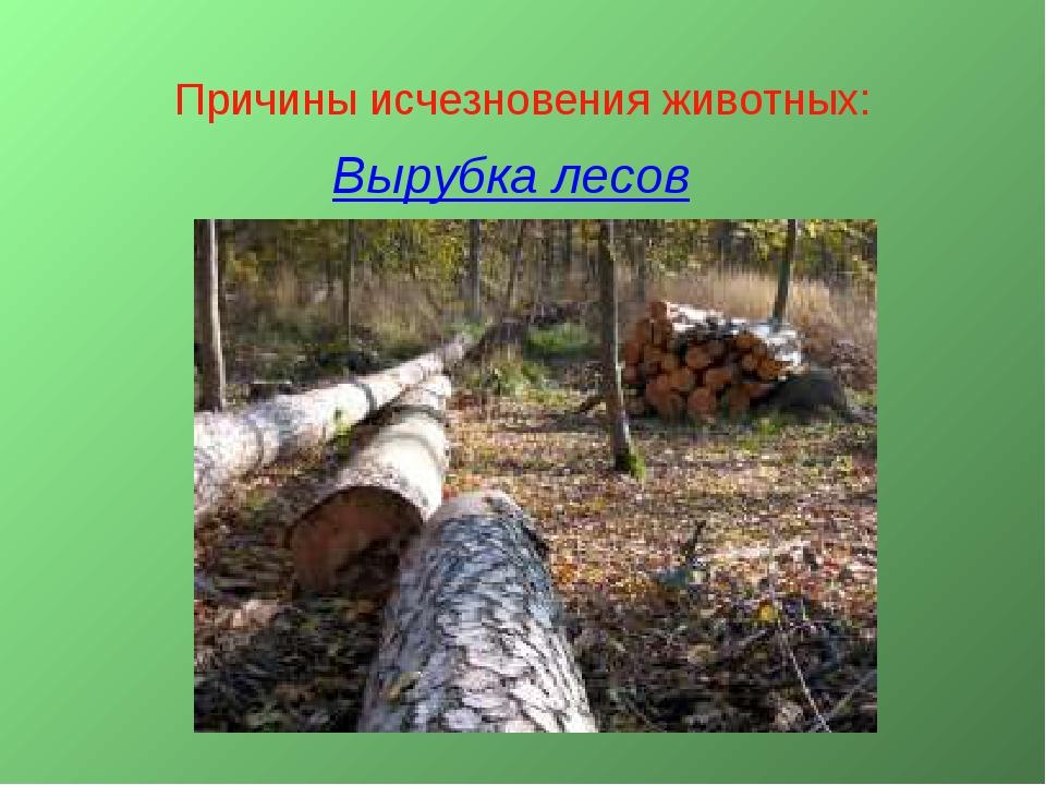 Причины исчезновения животных: Вырубка лесов