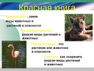 Красная книга Информирует, какие виды животных и растений в опасности Призыва