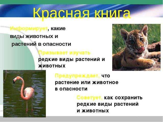 Красная книга Информирует, какие виды животных и растений в опасности Призыва...