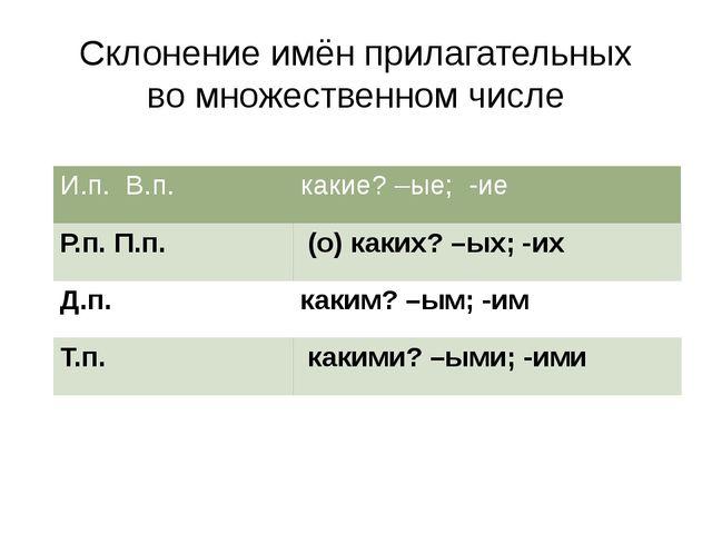 Склонение имён прилагательных во множественном числе И.п. В.п. какие? –ые;-ие...