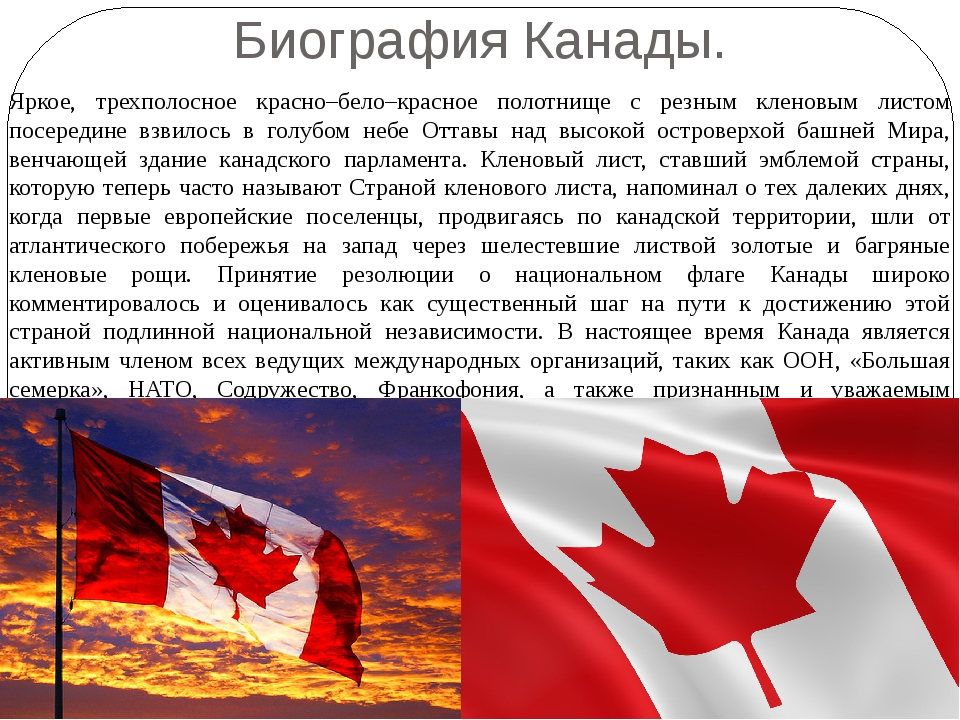 Биография Канады. Яркое, трехполосное красно–бело–красное полотнище с резным...