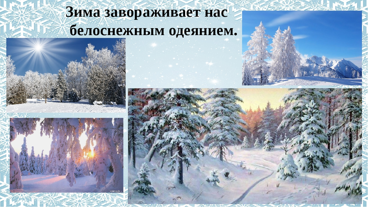 Зима завораживает нас белоснежным одеянием.