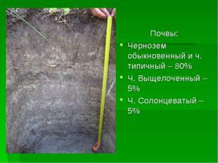 Почвы: Чернозем обыкновенный и ч. типичный – 80% Ч. Выщелоченный – 5% Ч. Сол