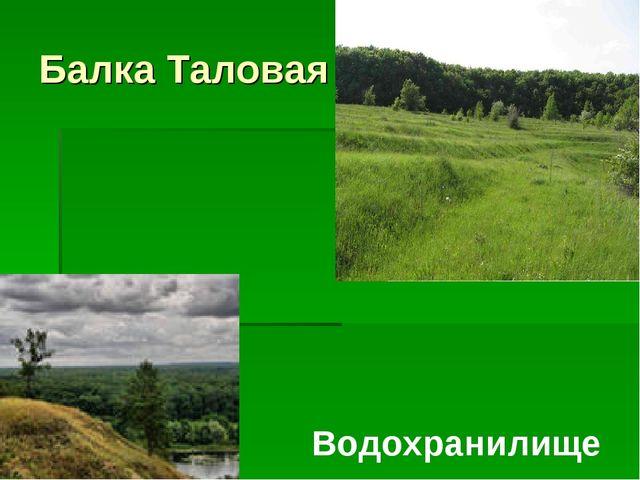 Балка Таловая Водохранилище