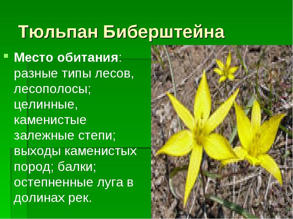 Тюльпан Биберштейна Место обитания: разные типы лесов, лесополосы; целинные,...