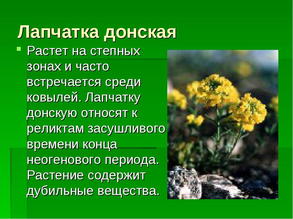 Лапчатка донская Растет на степных зонах и часто встречается среди ковылей. Л...