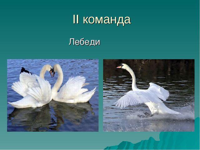 II команда Лебеди